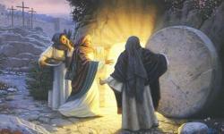 Reflexões: Cristo Vive